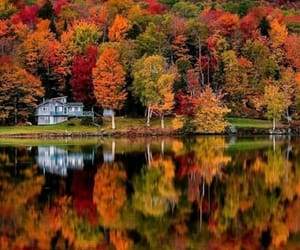 nature, adventure, and autumn image