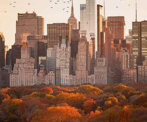 autumn and buildings image