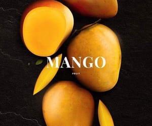 mango, fruit, and theme image