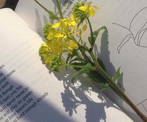 flowers, alternative, and book image