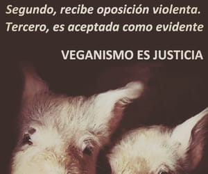 frases, pensar, and veganismo image