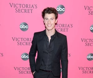 shawn mendes and Victoria's Secret image
