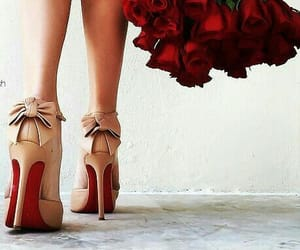 rose, red, and fashion image