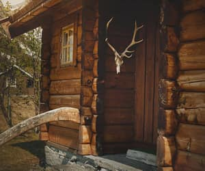 photography, log cabin, and wilderness image