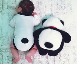 baby, panda, and kids image