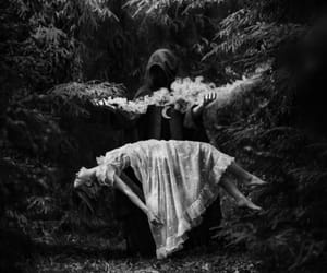 dark, forest, and witch image