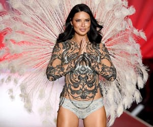 model and vsfs image