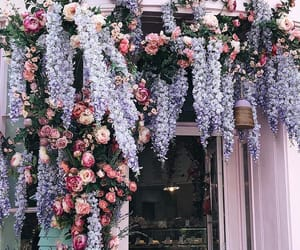 flowers and london image