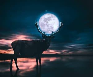 art, artists, and deer image