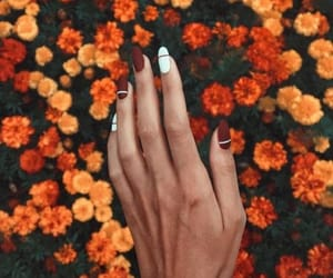 nails, flowers, and autumn image