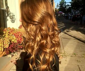 autumn, blonde hair, and brown hair image