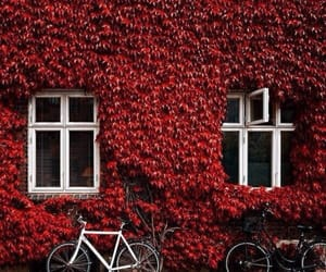 red and house image