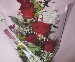 beautiful, roses, and redroses image