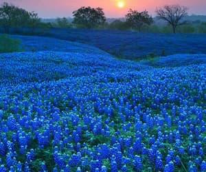 blue, bluw, and landscape image