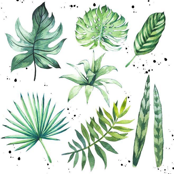 drawing, drawings, and green image