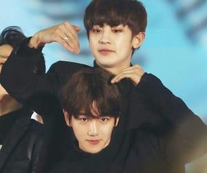 exo, kpop, and boyxboy image