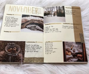 autumn, fall, and journal image