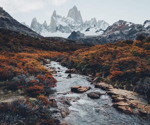 nature, fall, and landscape image