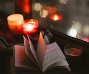 autumn, book, and rain image
