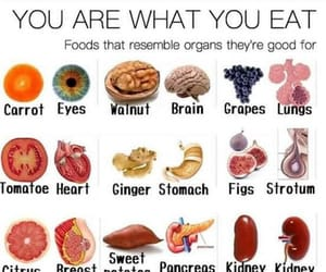 food, healthy, and health image