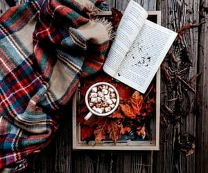 article, autumn, and drinks image