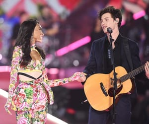 shawn mendes and winnie harlow image