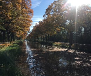 autumn, canal, and dutch image