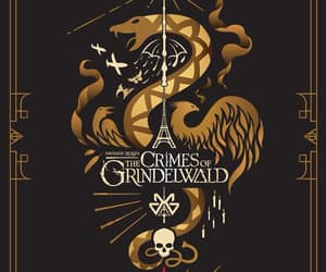fantastic beasts, animales fantásticos, and the crimes of grindelwald image