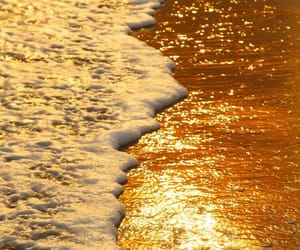 gold, golden, and beach image