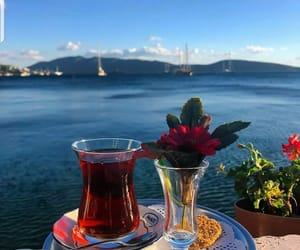 good morning, شاي, and صباح الخير image