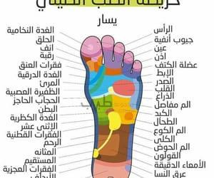 chin, الطب, and health image
