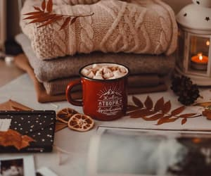 autumn, fall, and hot ​chocolate image