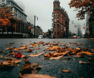 autumn, canada, and city image