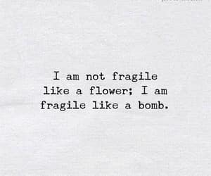flower, fragile, and heart image