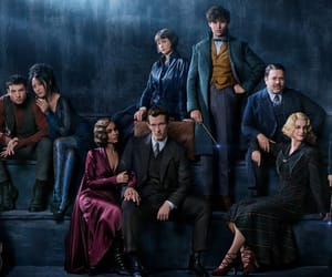 fantastic beasts, harry potter, and dumbledore image