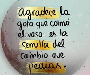 frases and cambio image