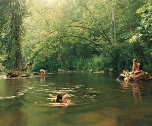 summer, friends, and forest image