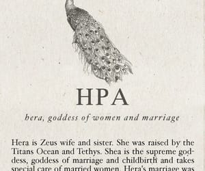 hera, mythology, and greek image