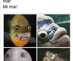 meme, Risa, and feo image