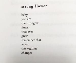 flower, flowers, and quote image