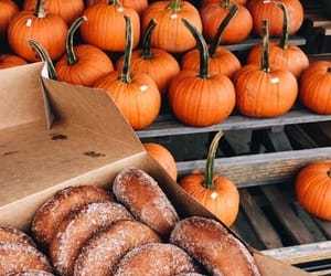 autumn, donuts, and pumpkin image