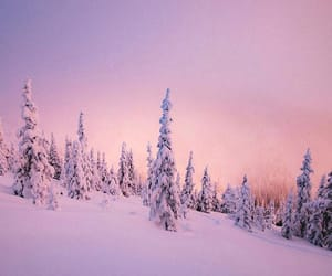 snow, pink, and white image