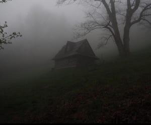 aesthetic, autumn, and fog image