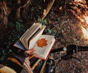 autumn, books, and cozy image