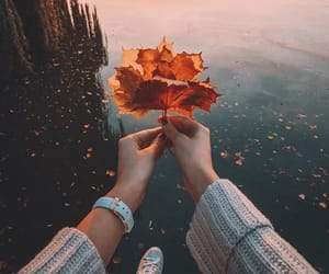 autumn, feelings, and hand image