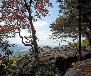 alabama, lookout, and autumn image