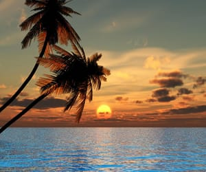 beaches, beach lovers, and paradise image