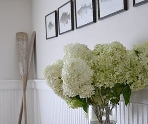 decor, home, and decorating image