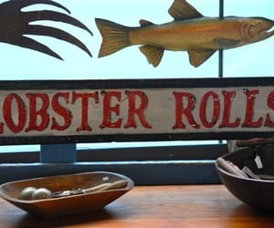 lobster, Maine, and coastal living image