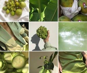 explore, fashion, and fruit image